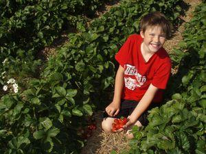 Oskar med bær